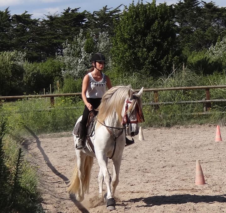 Centre Equestre du Roch