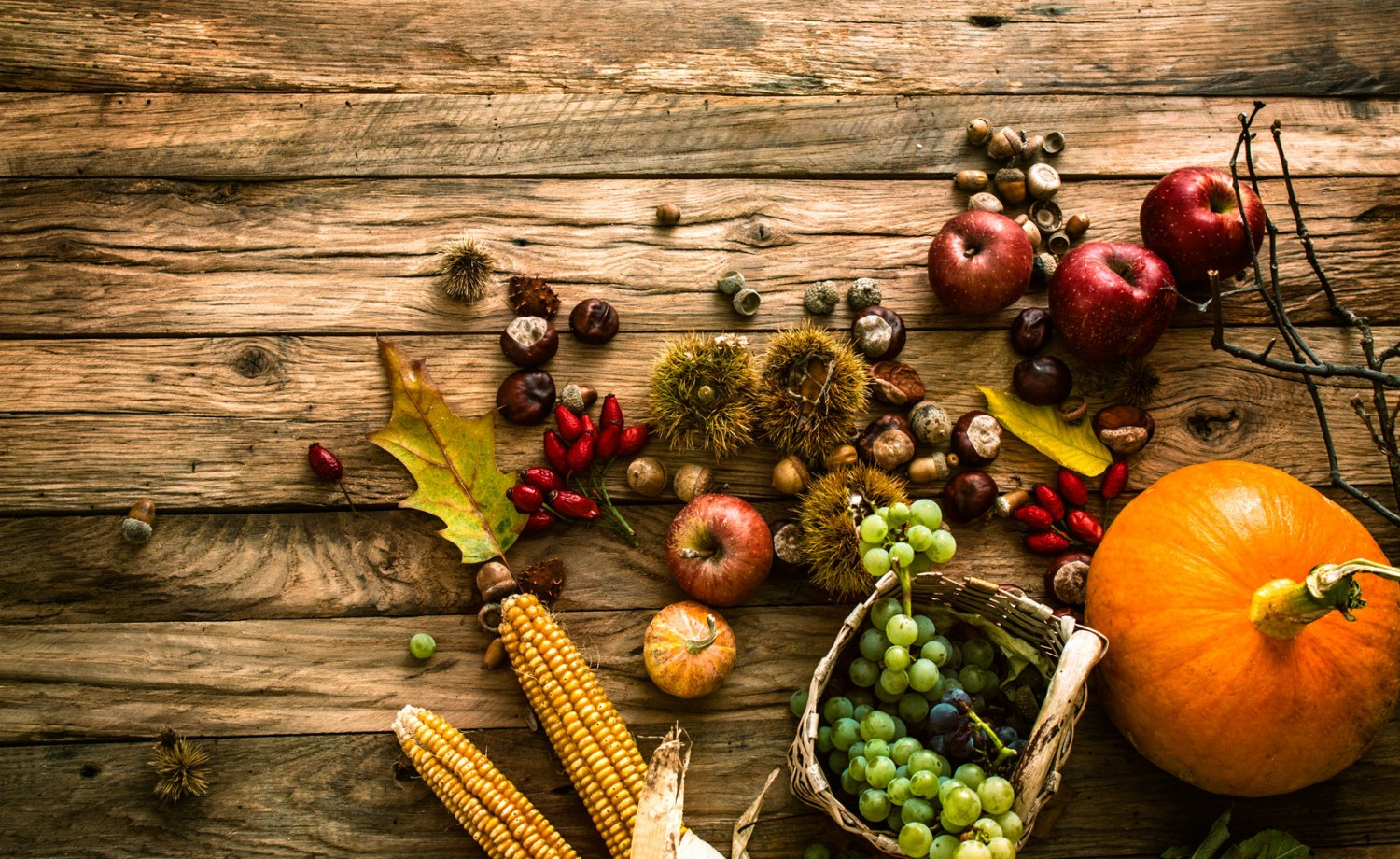 44891096 - autumn fruit background. autumn thanksgiving seasonal fruit. nature background