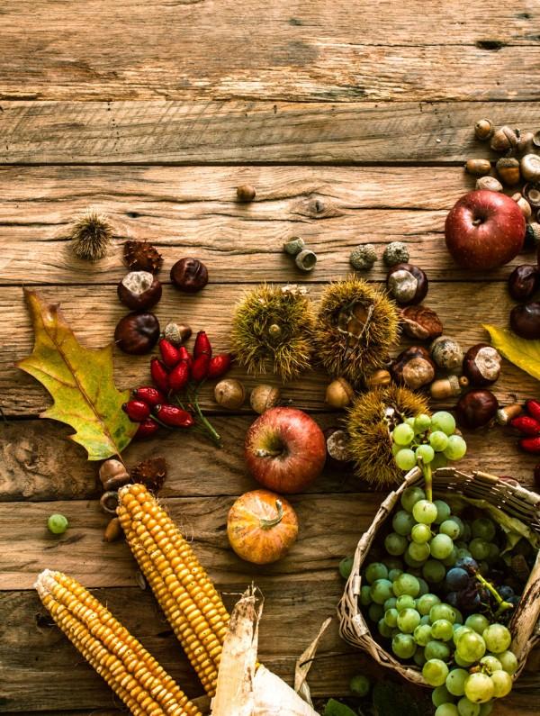 44891096 - autumn fruit background. autumn thanksgiving seasonal fruit. nature background