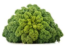 Fresh-organic-kale