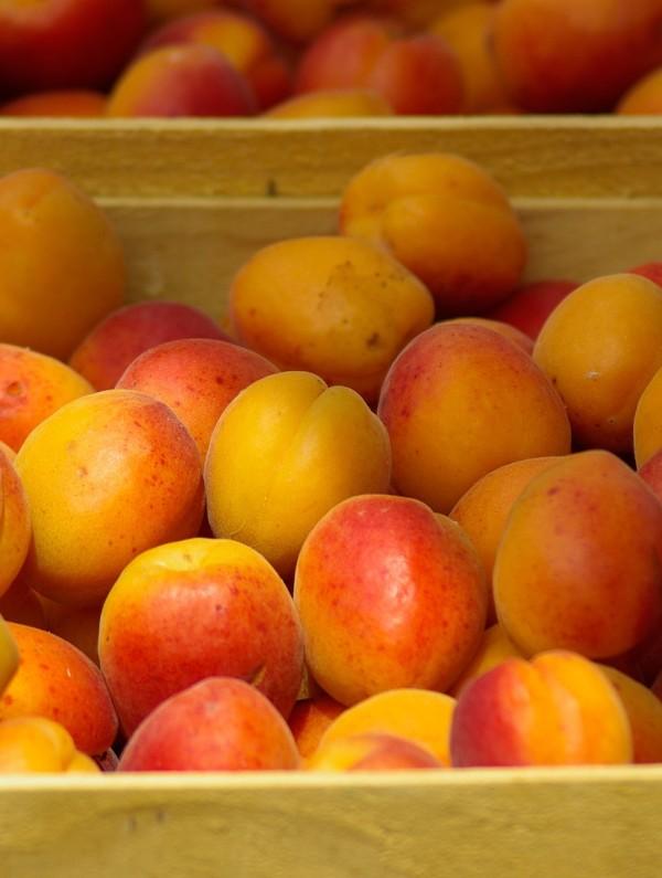 Abricots Frais @Pixabay